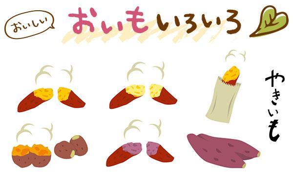 焼き芋品種