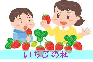 いちご狩り 千葉県香取市「いちごの杜」