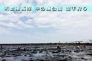 木更津海岸中の島公園