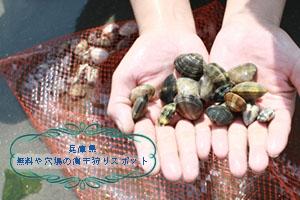 潮干狩り兵庫県
