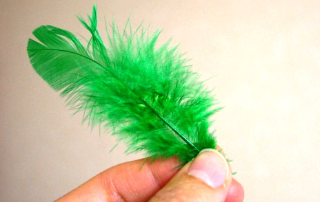 緑の羽根とは?