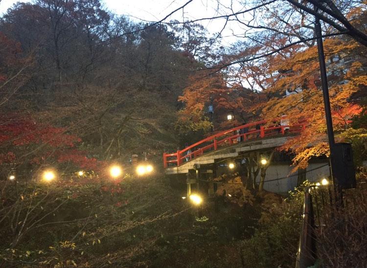 河鹿橋の紅葉狩りライトアップ