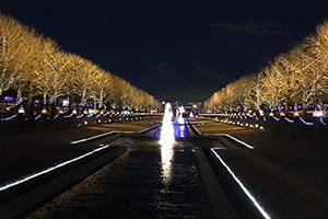昭和記念公園イルミネーション2019