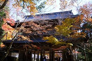 滋賀県大本山永源寺の紅葉狩り