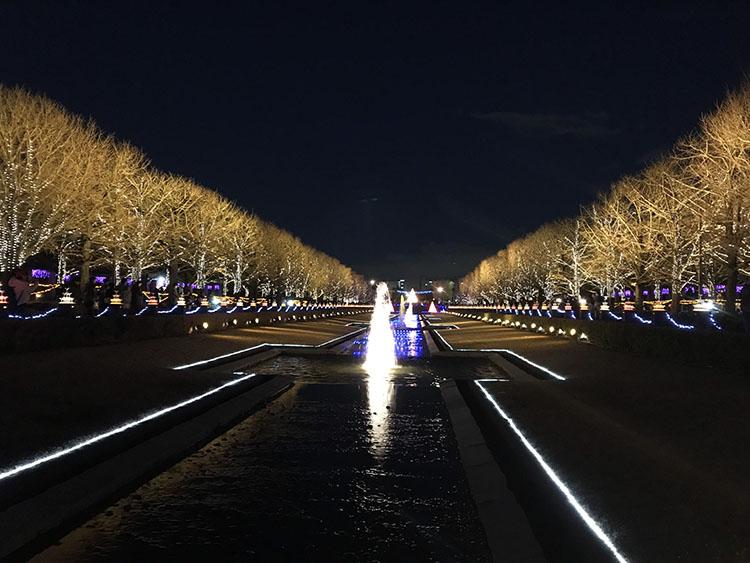 通称昭和記念公園のイルミネーション