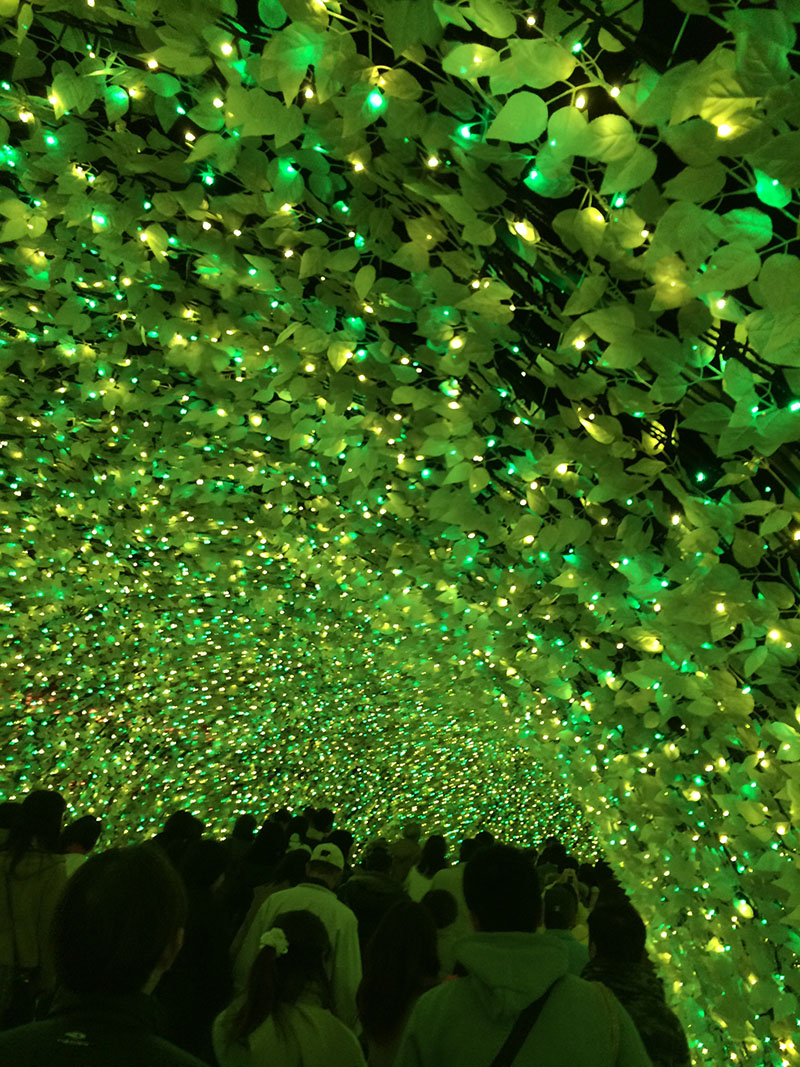 なばなの里イルミネーション光のトンネル
