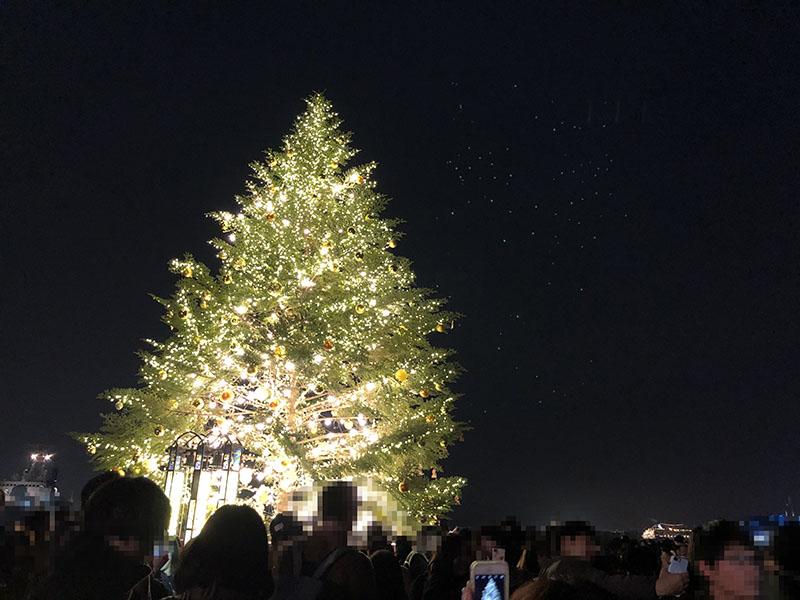 クリスマスマーケットin横浜赤レンガ倉庫クリスマスツリー