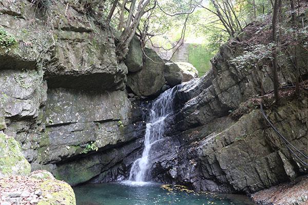 牛滝山紅葉狩り 滝