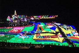 東京ドイツ村 イルミネーション光の地上絵300