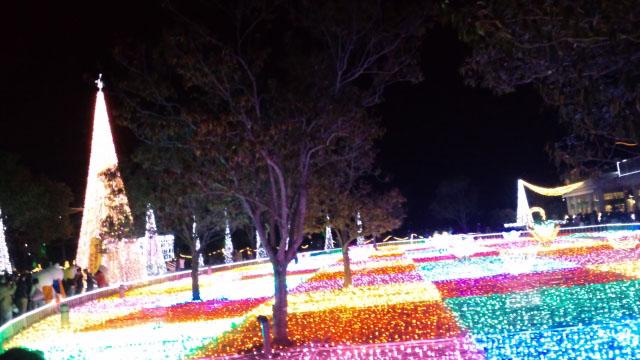 フローランテ宮崎のイルミネーション1