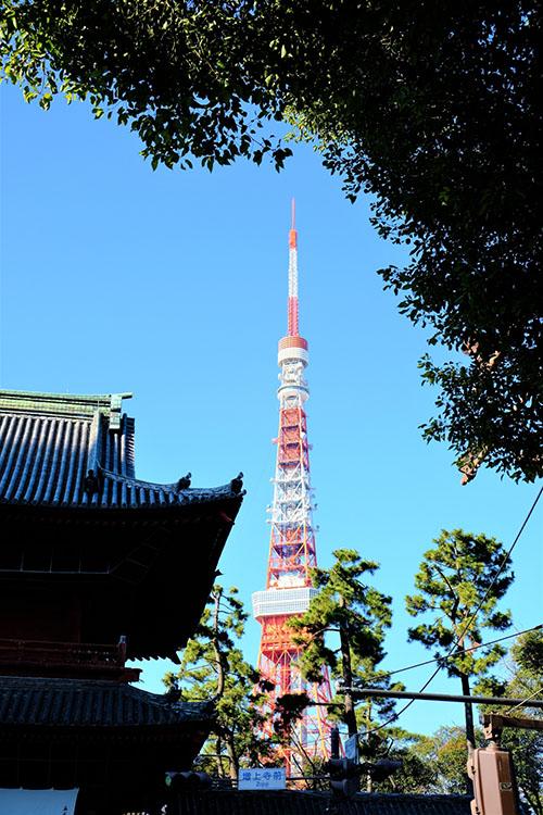 増上寺 初詣 東京タワー
