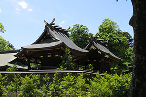 鷲宮神社の初詣