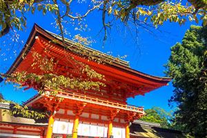 下鴨神社 お宮参りの体験談!参拝後の写真や食事についてもご紹介!