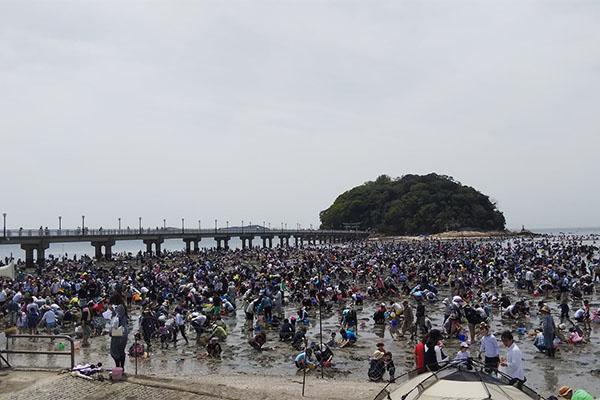 竹島海岸 潮干狩り
